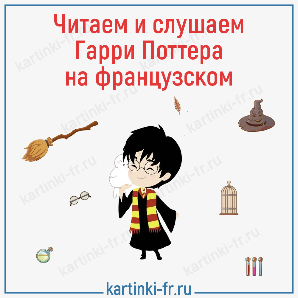 Гарри Поттер на французском