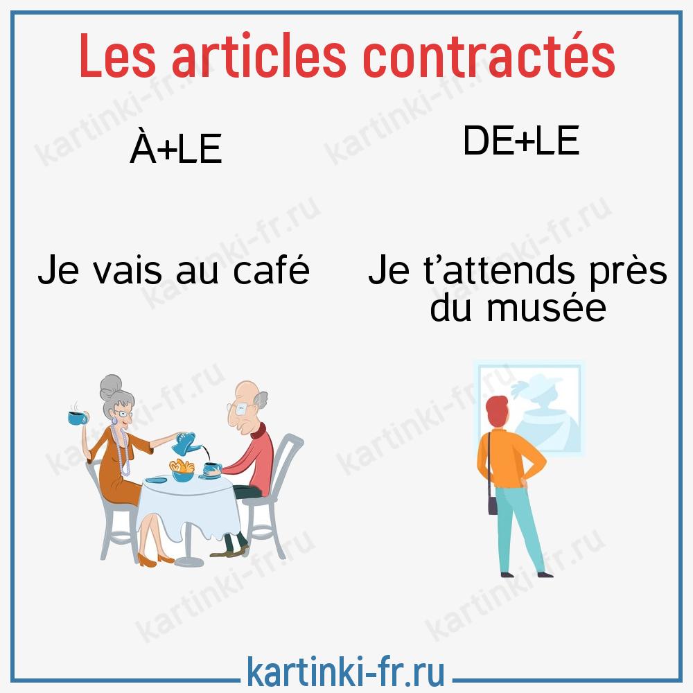 Слитные артикли во французском языке